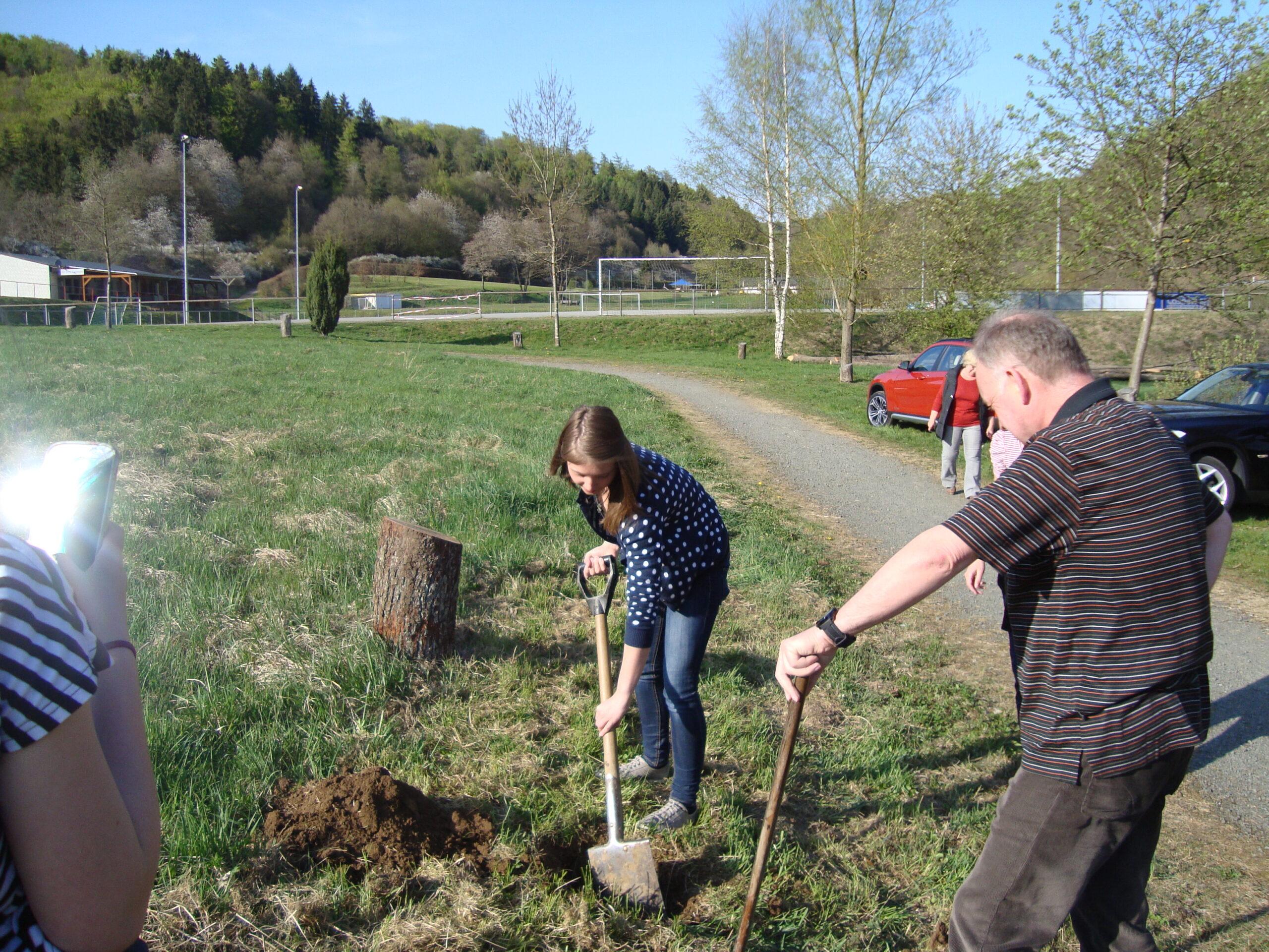 Pflanzung Baum des Jahres